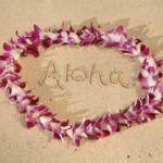 El legislativo de Hawaii aprueba la unión de uniones civiles entre personas del mismo sexo, que se enfrenta ahora al veto de la Gobernadora