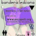 Vota por la bandera lesbiana