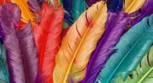 plumas arcoirís